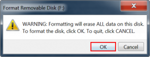 Confirm formatting the drive